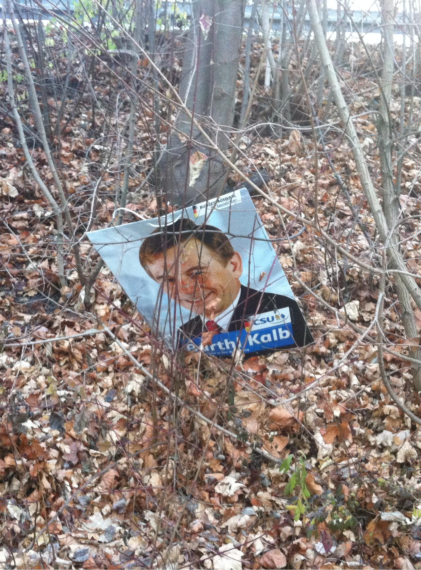 Politiker liegt grinsend neben der Strasse im Busch