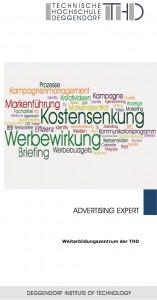 advertising expert