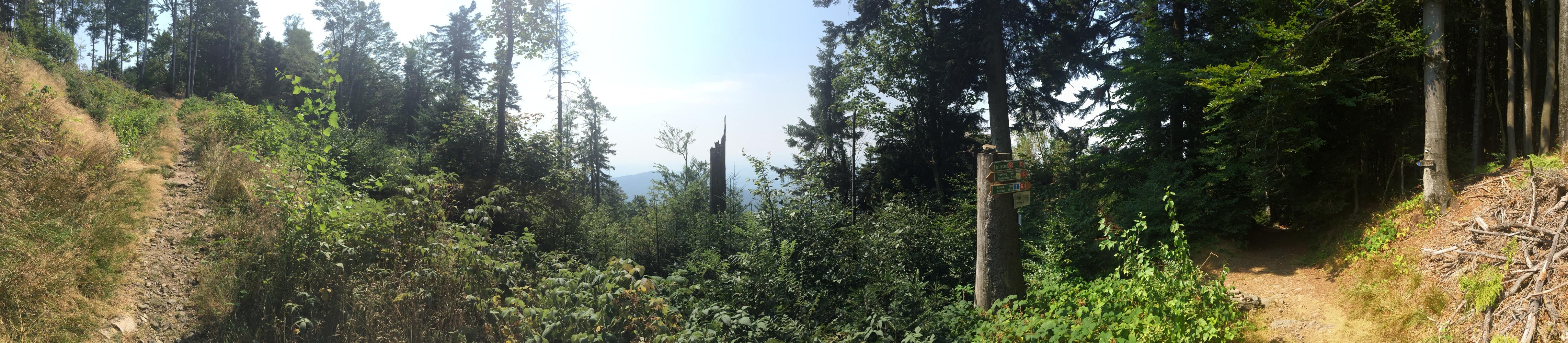Mountainbiking im bayerischen Wald: Panoramablick am Regensburger Stein, bayrischer Wald, Ostbayern.