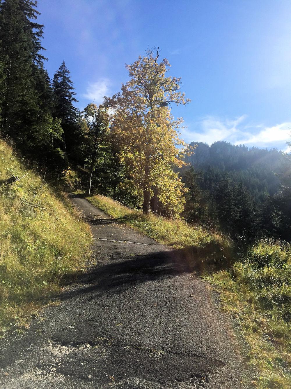 bergtouren bayern nicht überlaufen